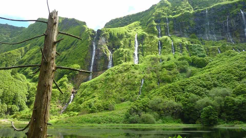 đảo azores