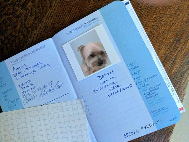 hộ chiếu thú cưng