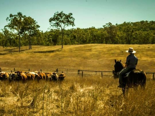 nông trại ở Úc