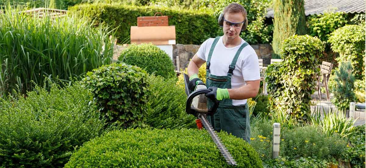 dịch vụ làm vườn