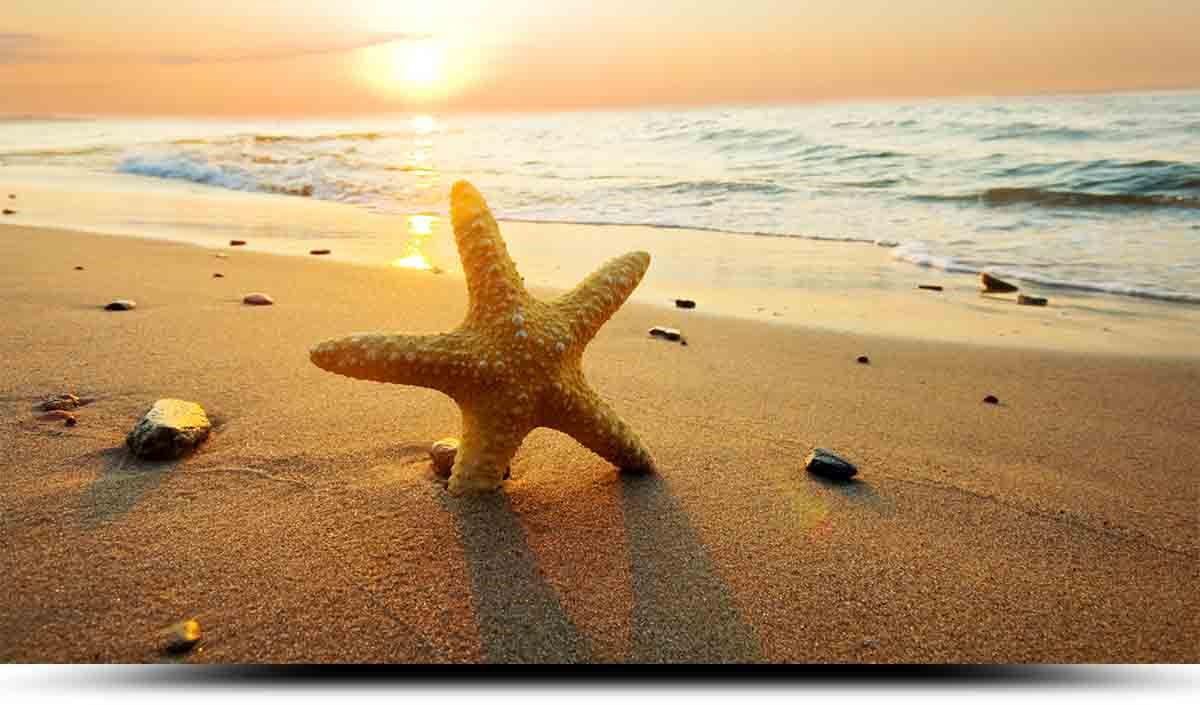 bãi biển ở Síp